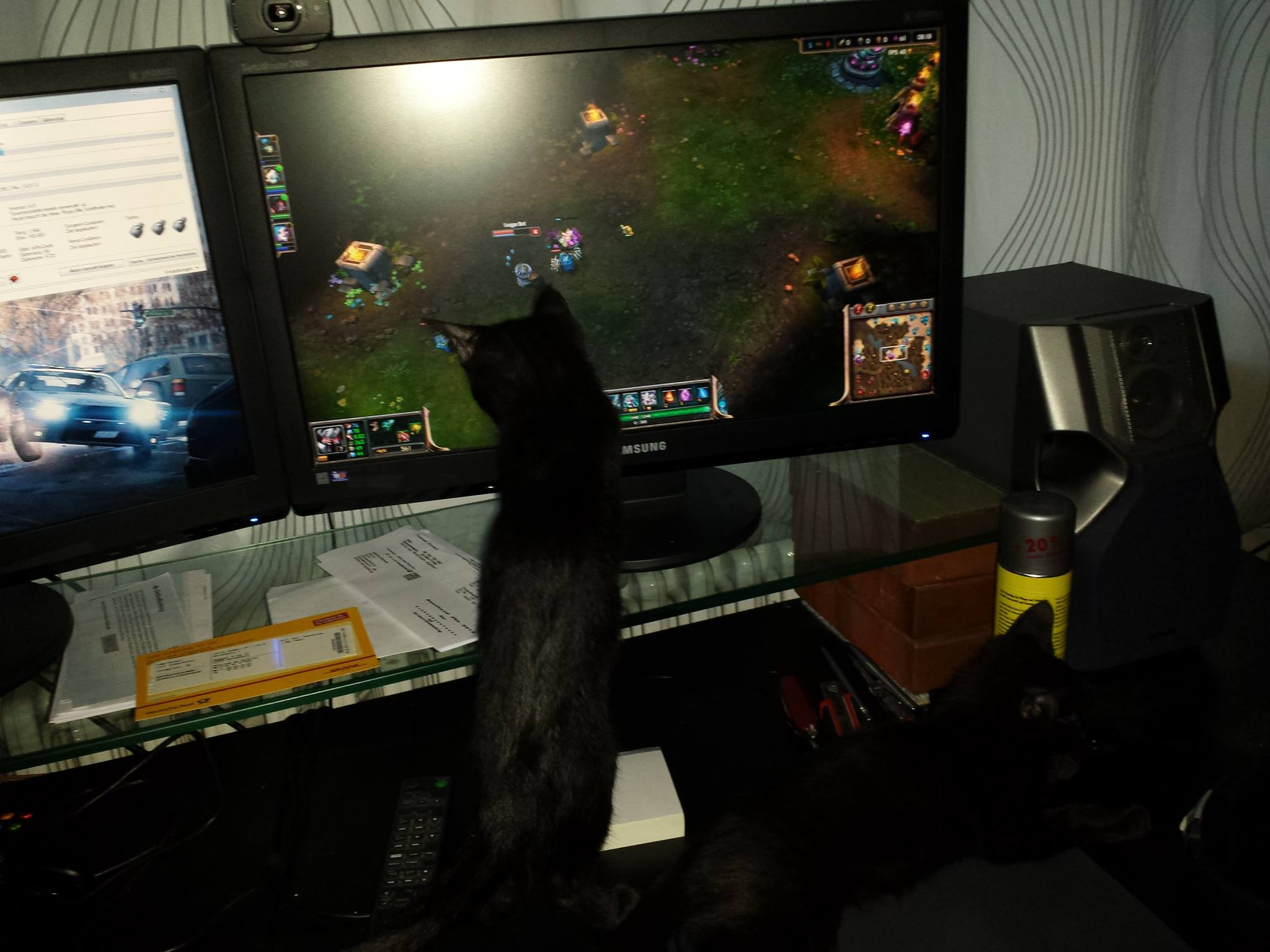 Gaming Kitty